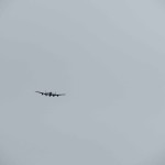 IMG_1774-61-low res