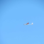 IMG_3260-3-low res