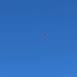 IMG_3287-29-low res