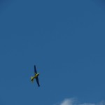 IMG_6613-038-low res
