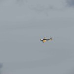 IMG_6618-040-low res