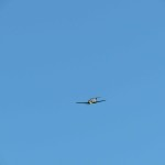 IMG_6671-044-low res